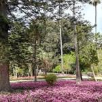 Anton Gardens à Attard